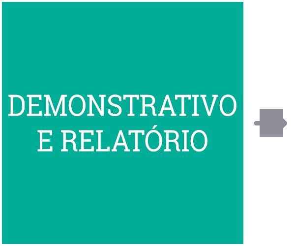 Demonstrativo e Relatório